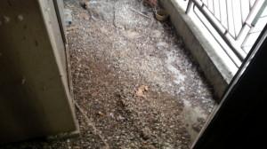 福岡市早良区西新でのベランダ鳩の糞掃除作業前