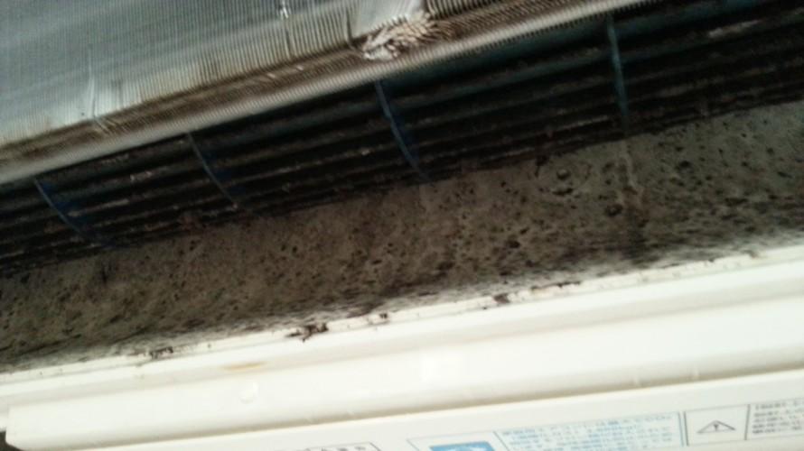 黒いカビ汚れが飛んでくるエアコン掃除前