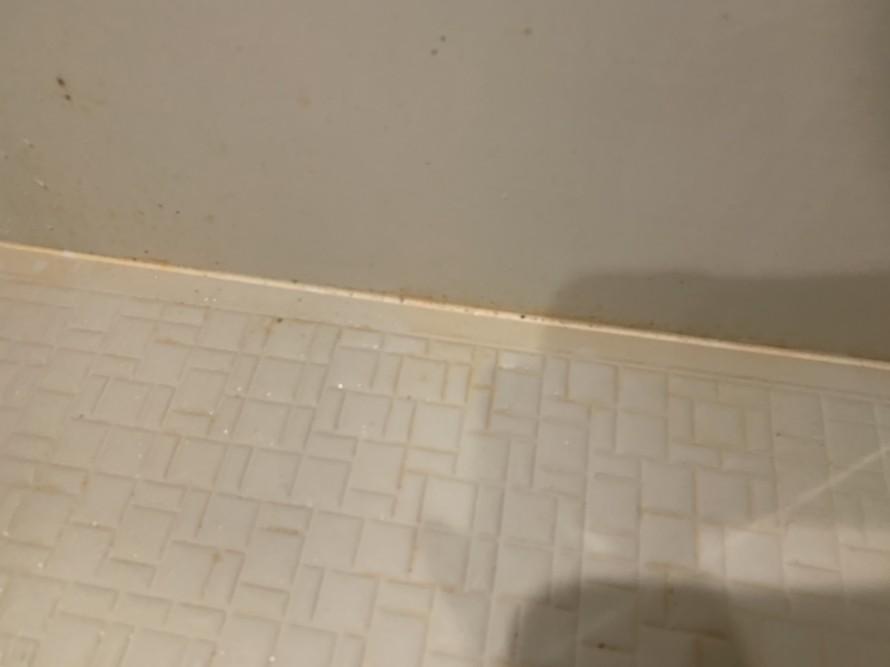 バスルームコーキングカビ掃除前